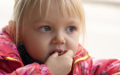 Trockenpflaumen: Gesundes für kleine Süßschnäbel