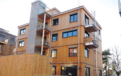 Baustoff Holz: Nachhaltigkeit im Bauen