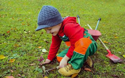 Pflanzen mit Kindern im Herbst